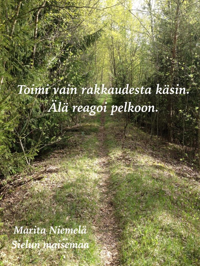 IMG_2738